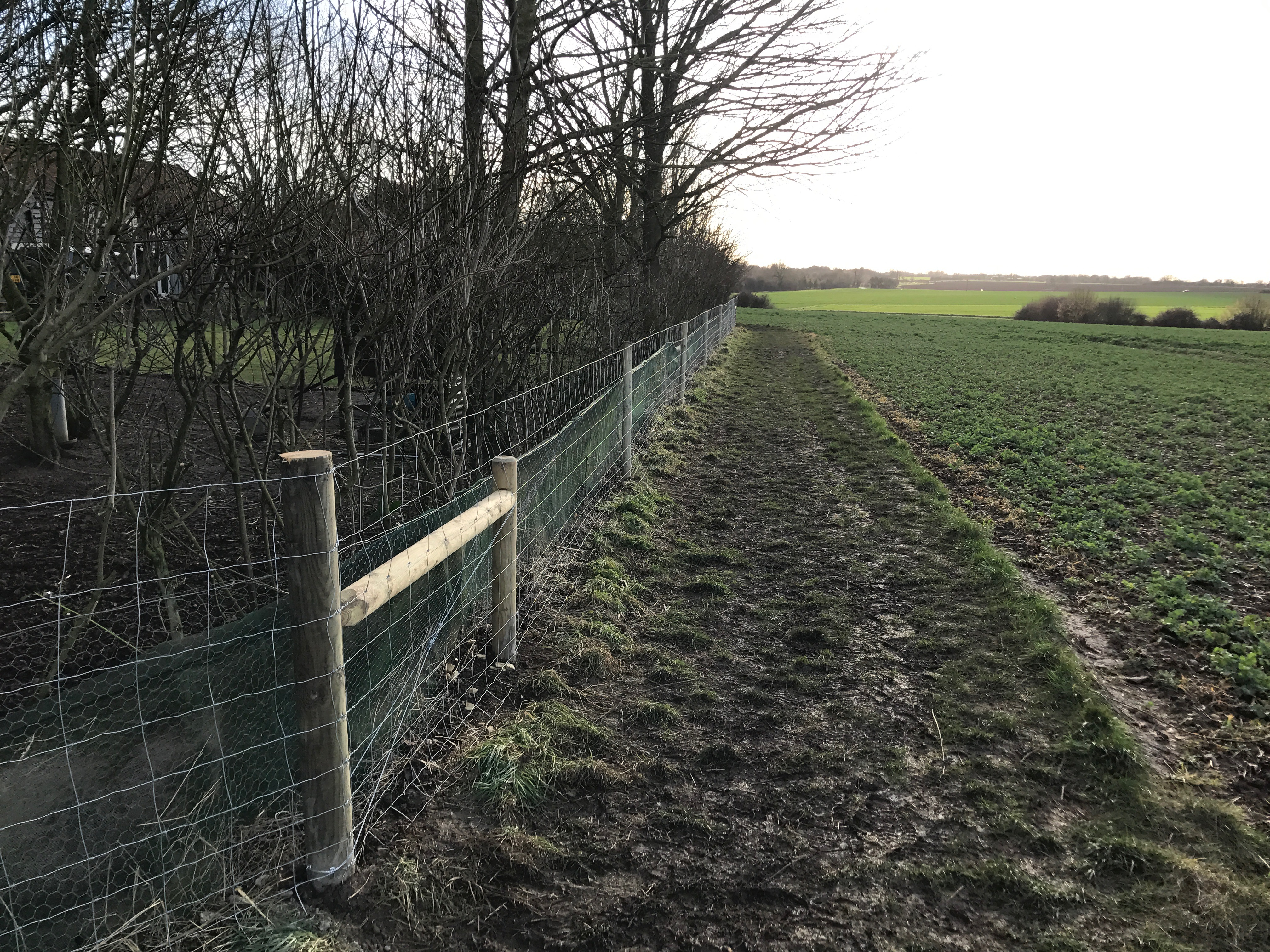 Stock fencing for agriculture